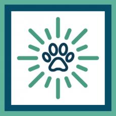 framed new logo for blog