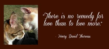 Love_Henry_David_Thoreau