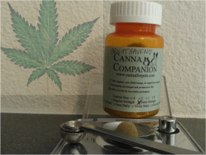 canna_companion