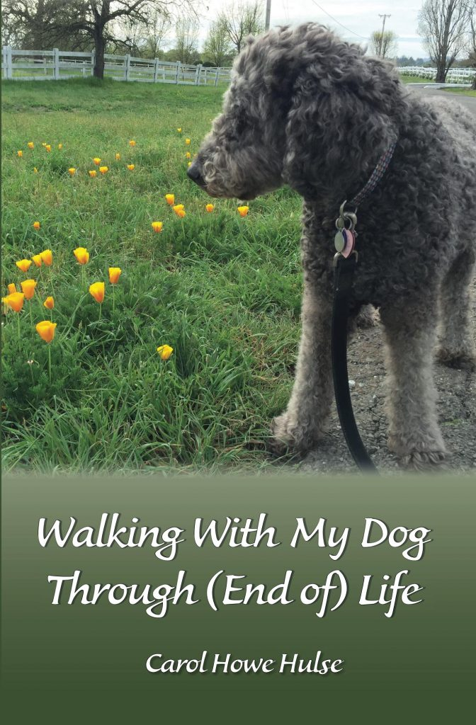 walking_with_my_dog__cover_for_kindle-091316