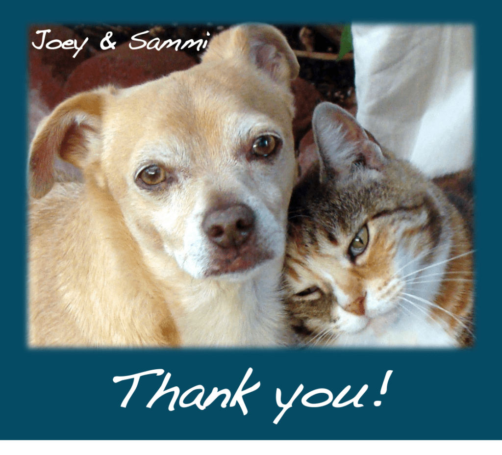 Dog and cat say thanks